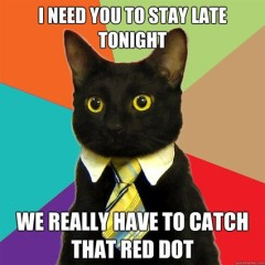 I Need You to Stay Late Tonight Cat Meme