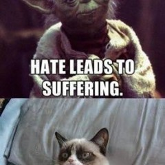 Fear leads to anger 240x240 cat meme archives page 932 of 982 cat planet cat planet,Fear Leads To Anger Meme
