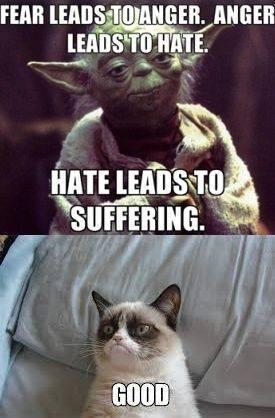 Fear leads to anger fear leads to cat meme cat planet cat planet,Fear Leads To Anger Meme