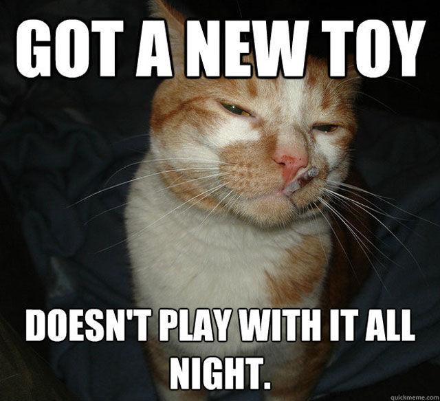 Got A New Toy Cat Meme Cat Planet Cat Planet