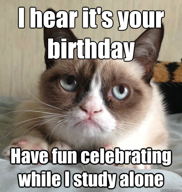 birthday meme cat