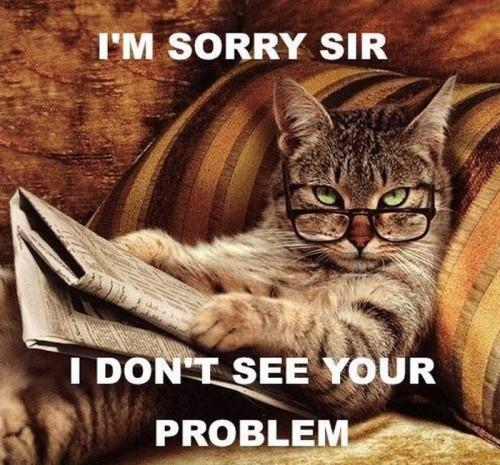 Sorry Sir Cat M...