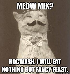 Meow mix meow mix? cat meme cat planet cat planet,Meow Meme