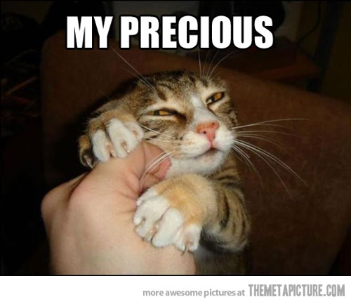 Funny Cat Meme : My precious cat meme planet