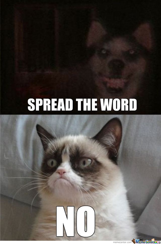 Origin Of The Word Cat Is Dog