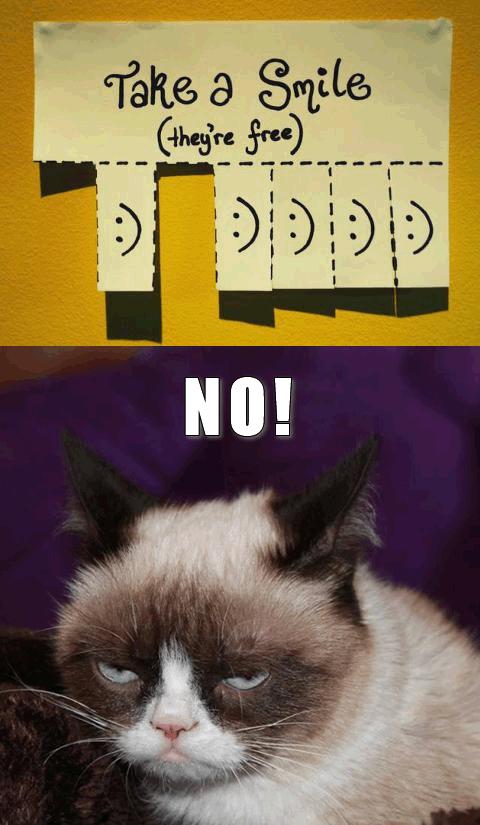 Take A Smile Cat Meme - Cat Planet   Cat Planet