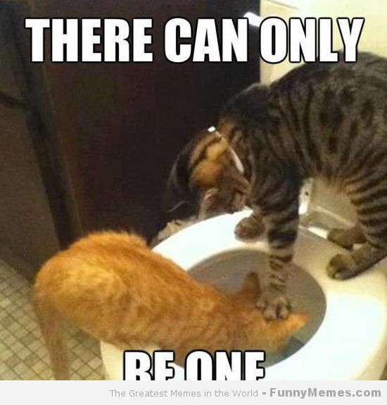 Funny Pictures Meme Cats : There can only cat meme planet