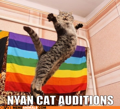 nyan-cat-auditions.png