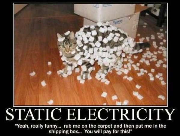 static-cat-meme.jpg