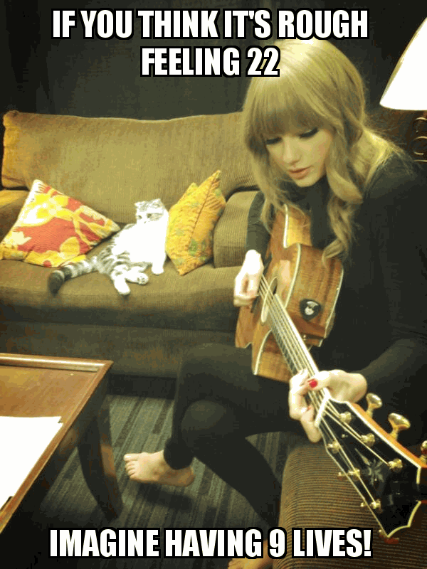 taylor swift meme 1 if you think it's rough feeling 22 cat meme cat planet cat planet