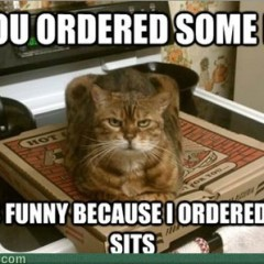 oh you ordered 240x240 cat meme archives page 904 of 982 cat planet cat planet,Pizza Cat Meme