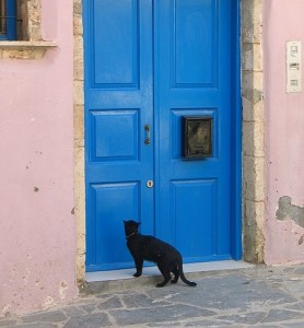 Cat at Blue Front Door