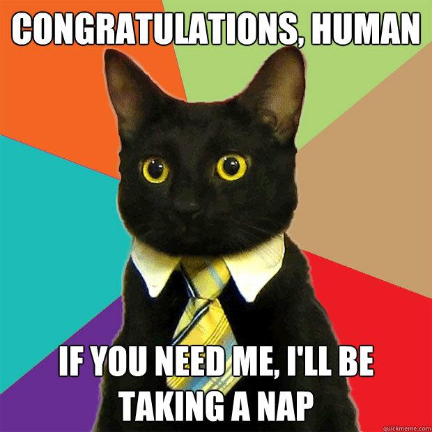 Congratulations cat meme