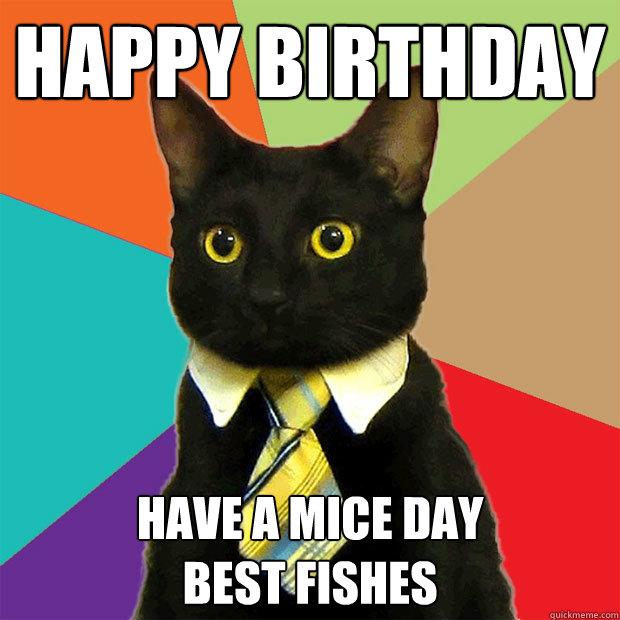 Happy Birthday Cat Meme - Cat Planet | Cat Planet