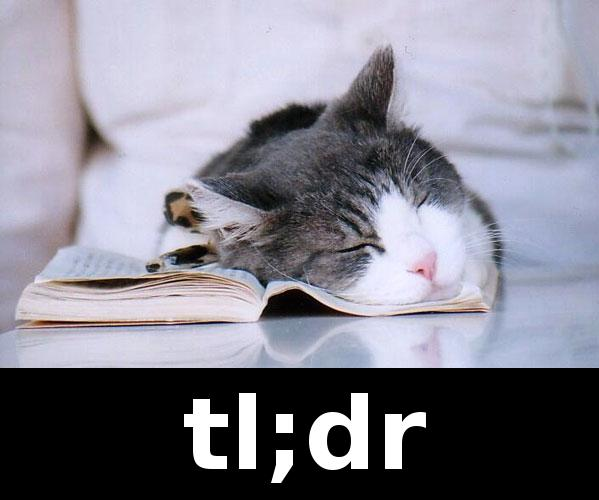 Image result for tl;dr cat