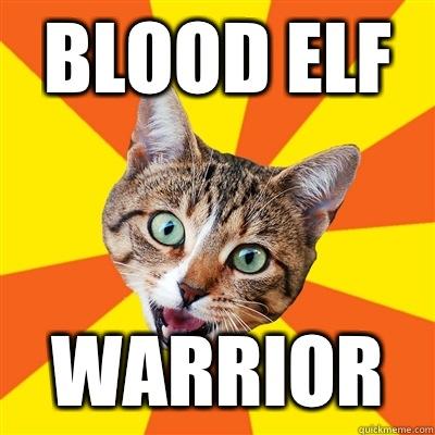 Blood Elf Warrior Cat Meme Cat Planet Cat Planet