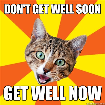 Dont get well soon1 don't get well soon cat meme cat planet cat planet