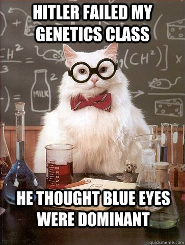 HITLER FAILED MY GENETICS CLASS hitler failed my genetics class cat meme cat planet cat planet,Genetics Meme