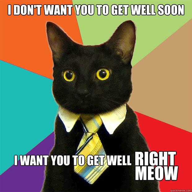 I dont want you to get i don't want you to get cat meme cat planet cat planet