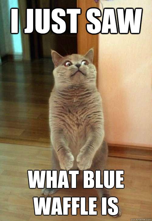 recipe: blue waffles meme [33]