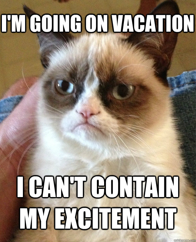 IM Going On Vacation Cat Meme