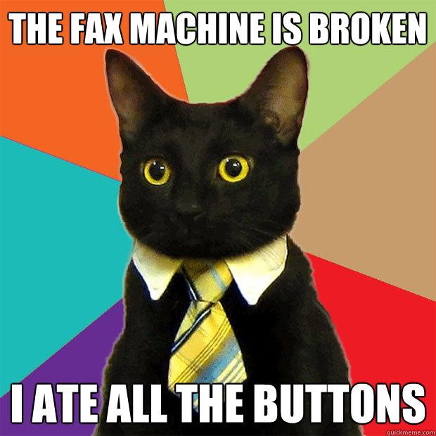 The fax machine the fax machine cat meme cat planet cat planet