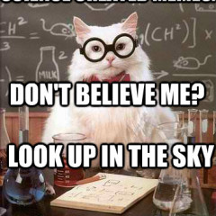 Science created memes 240x240 cat meme archives page 532 of 982 cat planet cat planet