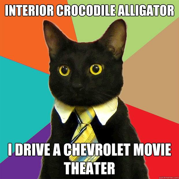 Interior Crocodile Alligator Cat Meme