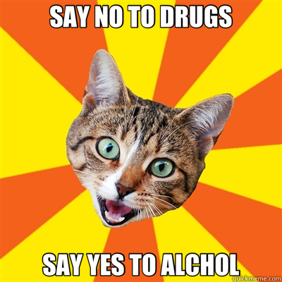 SAY NO TO DRUGS say no to drugs cat meme cat planet cat planet