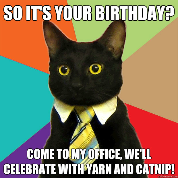 Knitting Birthday Meme : So it s your birthday cat meme planet