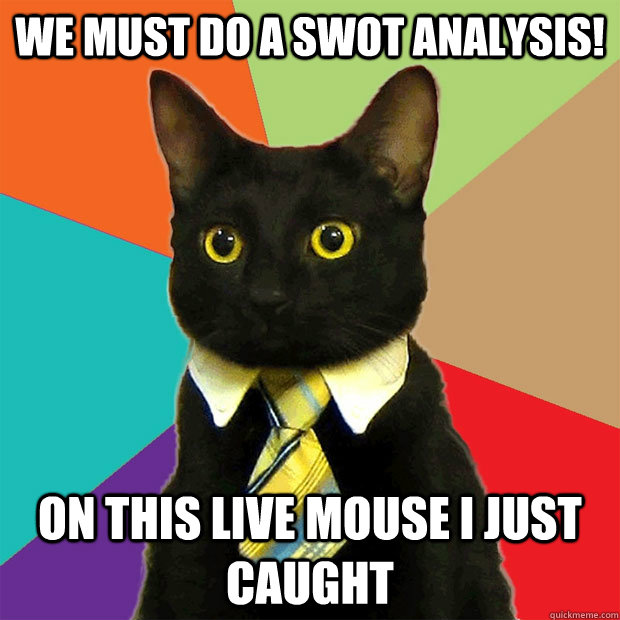 We Must Do A Swot Analysis Cat Meme Cat Planet Cat Planet