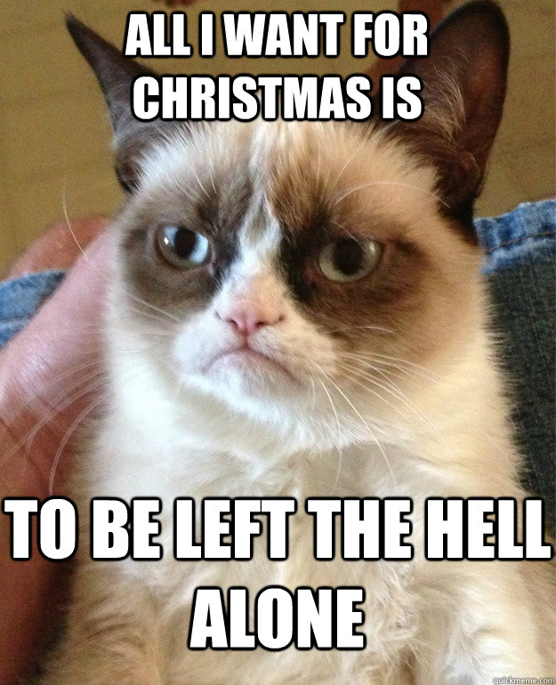 All I Want For Christmas Meme.All I Want For Christmas Is Cat Meme Cat Planet Cat Planet
