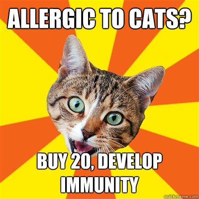 Allergic to cats buy 20 develop immunity allergic to cats? buy 20, develop immunity cat meme cat planet