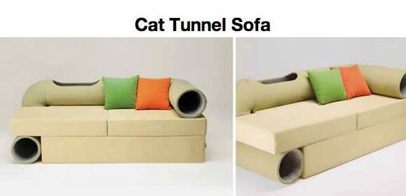 Cat Tunnel Sofa Cat Meme Cat Planet Cat Planet