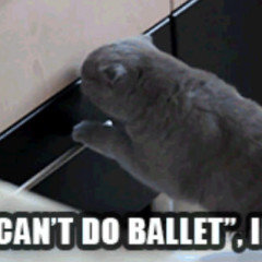 Cats Can%E2%80%99t Do Ballet Indeed 240x240 cat meme archives page 240 of 982 cat planet cat planet
