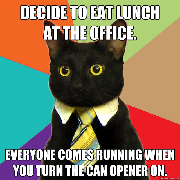 Decide To Eat Lunch At The Office Cat Meme Cat Planet Cat Planet