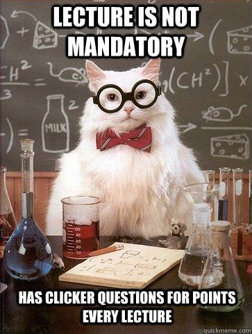 Lecture is not mandatory cat meme cat planet cat planet lecture is not mandatory cat meme thecheapjerseys Gallery
