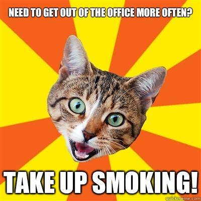 Need To Get Out Of The Office Cat Meme Cat Planet Cat Planet
