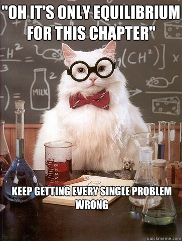 OH ITS ONLY EQUILIBRIUM FOR THIS CHAPTER oh it's only equilibrium for this chapter cat meme cat planet,Equilibrium Memes