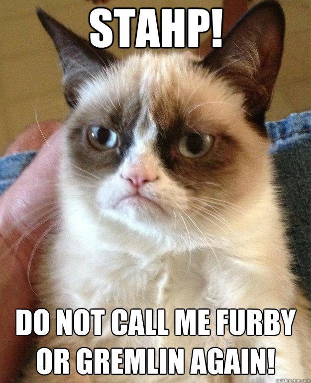 Stahp Do Not Call Me Furby Cat Meme Cat Planet Cat Planet