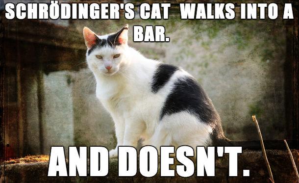 [Image: Schrodinger%E2%80%99s-cat-walks-into-a-bar.jpg]