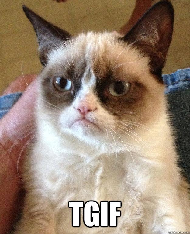 Tgif Cat Meme Cat Planet Cat Planet