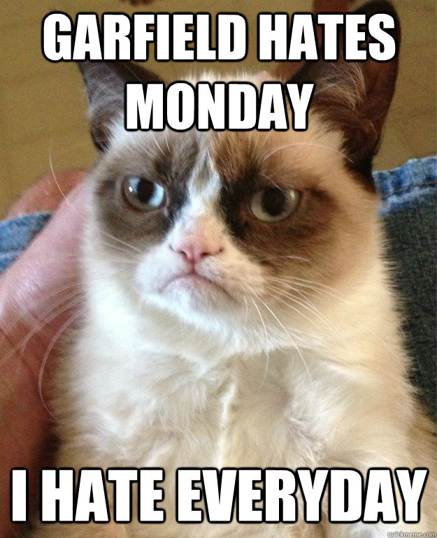 Garfield Hates Monday Cat Meme Cat Planet Cat Planet