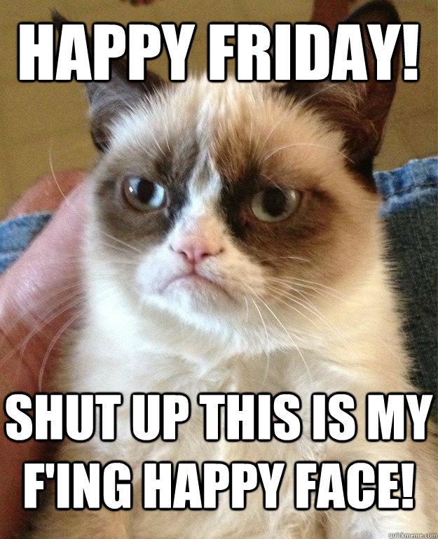 Happy Friday Shut Up This Is Cat Meme Cat Planet Cat Planet