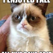 I Enjoyed Fall All Five Days Of It Cat Meme