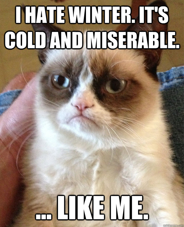 I HATE WINTER i hate winter cat meme cat planet cat planet
