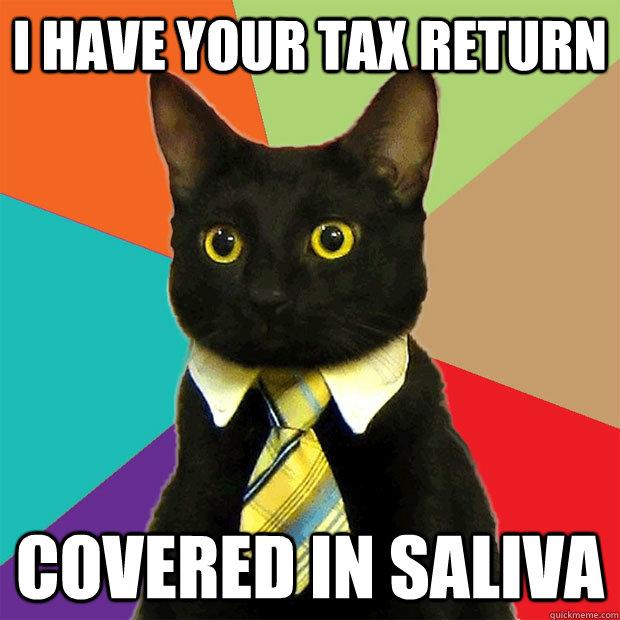 I have your tax return i have your tax return cat meme cat planet cat planet
