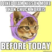 I Liked Liam Neeson More Than Chuck Norris Cat Meme