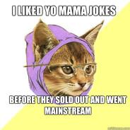 I Liked Yo Mama Jokes Before Cat Meme