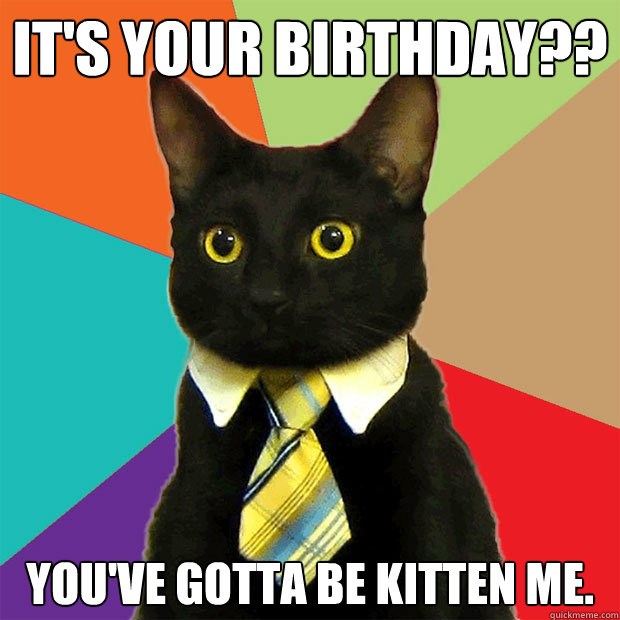 Its your birthday it's your birthday cat meme cat planet cat planet